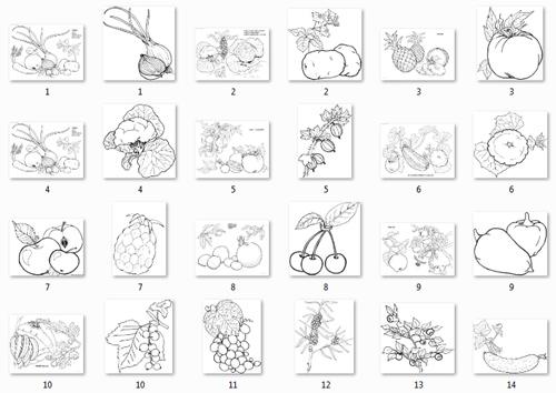 картинки овощей и фруктов раскраски по отдельности
